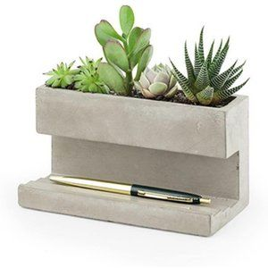 Kikkerland Concrete Succulent Planter Large Desk